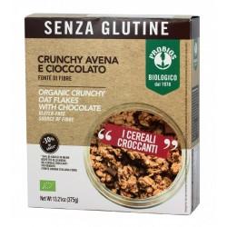 Crunchy avena e cioccolato